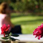 Día internacional de la mujer con la Reproducción Asistida