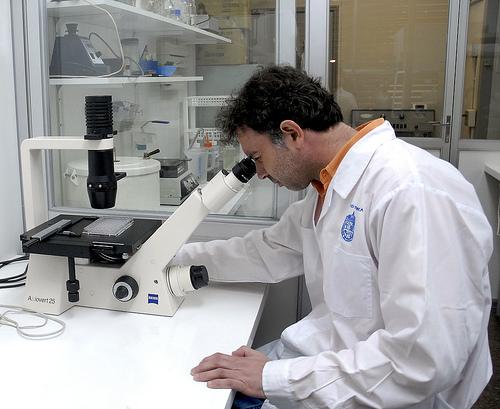 Reconstrucción del endometrio con células madres adultas